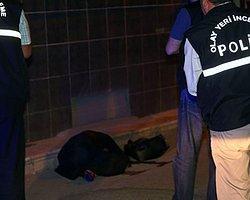 Genç Kadın Başı Ezilerek Öldürüldü