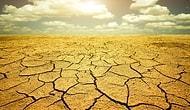 11 Madde ile Dünya 3 - 6 °C Daha Sıcak Olsa Ne Olurdu?