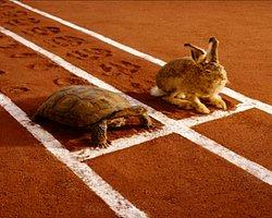 Akhilleus (Aşil) Ve Kaplumbağa Paradoksu