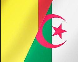 Belçika – Cezayir