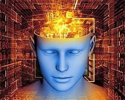 Hafızayı Silen Ve Sahte Anı Oluşturan Beyin Çipi Geliştirildi