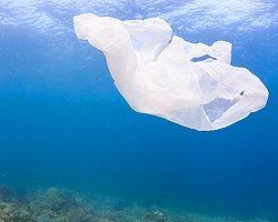 Okyanustaki Çöplerin Yüzde 99'una Ne Olduğu Bilinmiyor