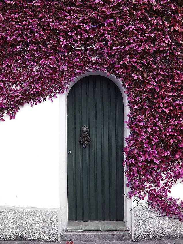 11. Sardinya, İtalya