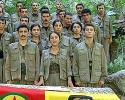 21 Üniversite Öğrencisi PKK'ya Katıldı