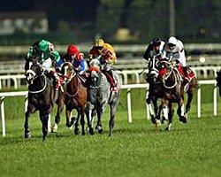 9 Temmuz İstanbul At Yarışı Gece Koşuları Tahmin, Tüyoları