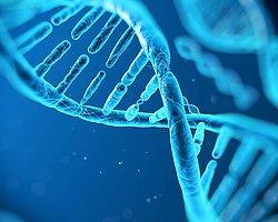 Türk Bilim Adamından Kansere Karşı ''DNA Onarımı'' Buluşu