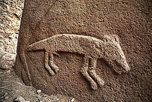 Image result for göbeklitepe tilki