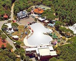 Park Orman'ın İmara Açılması Meclis Gündeminde