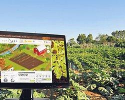 Sanal Tarımla Doğal Ürün Yetiştiriyorlar