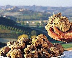 Dünyanın En Pahalı 8 Yiyeceği