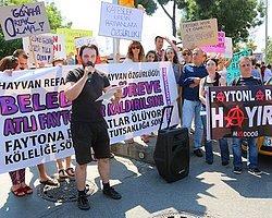 'Yılda 400 At Ölüyor Faytona Binme!' Kampanyası