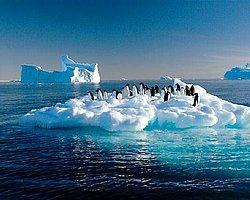 İklim Değişikliğinin İnsan Sağlığı İçin Oluşturduğu 6 Tehdit