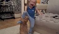 Çocuklara Kötü Davranmaya Ant İçmiş 29 Rahatsız Hayvan
