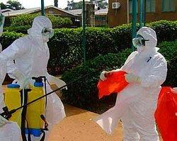 İskenderun'da Ebola Virüsü Paniği