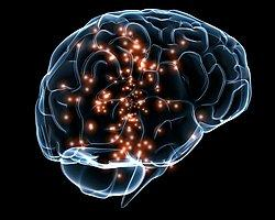 Beyin Tümörüne 'Akıllı' İlaç