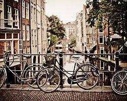 Dünyanın En Büyük Bisiklet Parkının Temeli Hollanda'da Atıldı