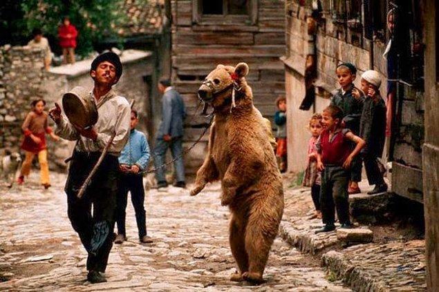 14. Mahalleye gelen ayı oynatanları izlemek.