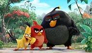 Angry Birds'den İlk Kare!