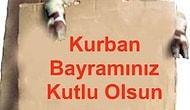 Karikatürlerle Kurban Bayramı Anlatımı!