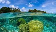 İklim Değişikliği Dünya Güzelliklerini Yok Etmeden Önce Yapılması Gereken 32 Şey