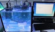Su içerisinde çalışan bilgisayar, Türkiye'de ilk!