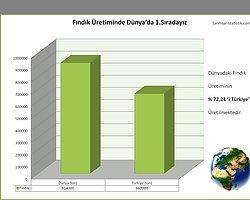Fındık Üreterek Dünyaları Besliyoruz % 72,21