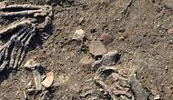 Korku Filmlerinden Çok Daha Korkunç 6 Arkeolojik Keşif