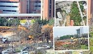 Orman Bakanlığı Arka Bahçesindeki 500 Ağacı Kesti