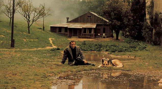 9. Resmi makamların izni ile İtalya'da çekilen Nostalghia (1983) Andrei Tarkovsky'nin sıla özlemini dışa vurduğu ve sürgünde çevirdiği ilk filmidir.