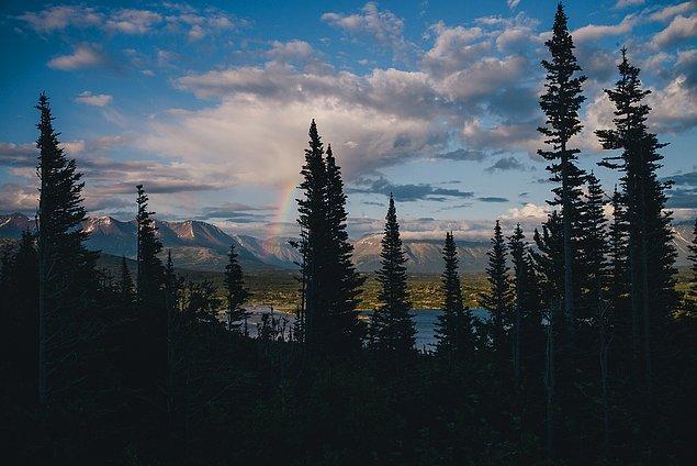 35. ''Yukon'dan çıkış yolumuz bize bu manzarayı bahşetti. Günler boyunca gökkuşağı vardı.''