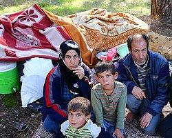 Suriyeli Sığınmacıların Türkiye'ye Etkileri | Oytun Orhan (*) | Al Jazeera