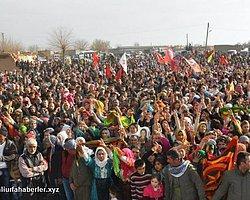 Kobani sevinci suruçu sardı