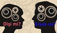 Beynin Daha Çok Dişi mi, Erkek mi?