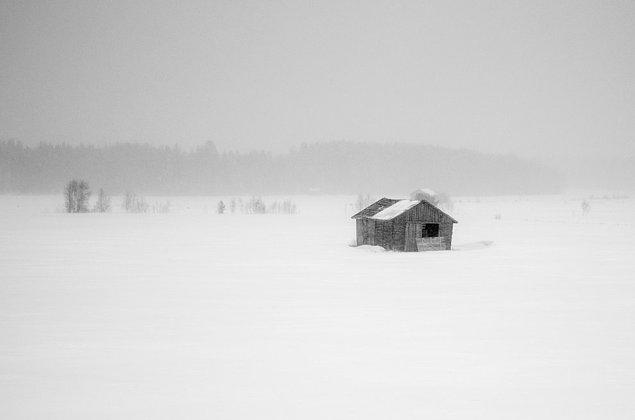 14. Çünkü eğer trenle Finlandiya'ya doğru seyahat ederseniz, camınızdan böyle bir manzara göreceksiniz.