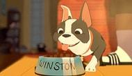 En İyi Kısa Animasyon Dalında Oscar Alan Film   Feast