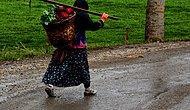 Türkiye'de Kadınların En Uzun Yaşadığı İl Giresun