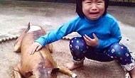 Vietnamlı Çocuk Kayıp Köpeğini Et Tezgahında Görünce