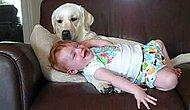 Bu Bebeğin En Sevdiği Şey Köpeğin Onu Yalaması