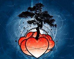 Sevginizi İfade Etmenin 5 Etkili Yolu