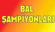 BAL' da şampiyon olan 11 takım.