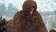 Arılar kralı rekor kırdı