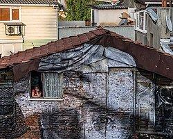 The Wrinkles Of The City / İstanbul (flycam hava çekimleri)