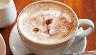 Sabah Kahvenizde Kendi Resminizi Bile Görmeniz Artık Pek Mümkün: Latte Printer'ı Ripple