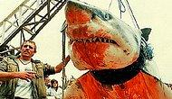 Hoşgeldin Yaz! Ülkemizden ve Dünyadan Dehşet Verici Köpekbalığı Saldırıları