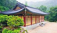 Güney Kore'ye Gitmek İçin 5 Sebep