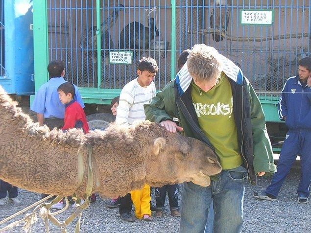 Özbekistan'da farklı arkadaşlar da edinmiş Gunnar.