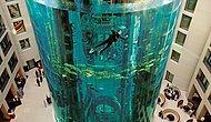 25 Metre Yüksekliği ve İçindeki Asansörü İle Görenleri Büyüleyen Akvaryum