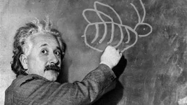Einsteinin Iddiası Bal Arıları ölürse Insanlar Da ölür Peki