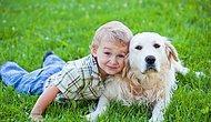 Köpeklerle Çocukların Pek Bilmediğimiz Acayip İlişkisini Gösteren 22 GIF
