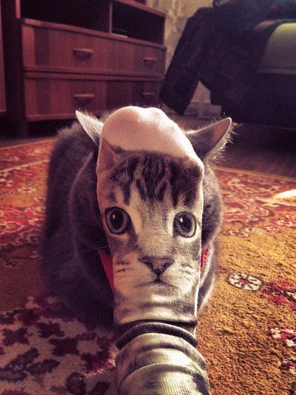 Кошачьи носки с ушами